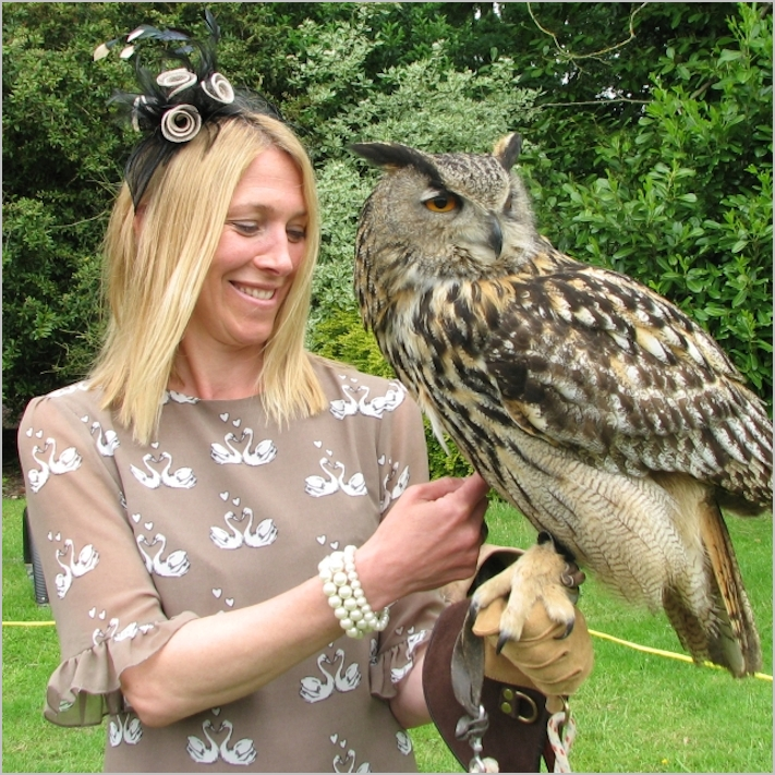 Guest elvis European eagle owl wedding birds of prey experience