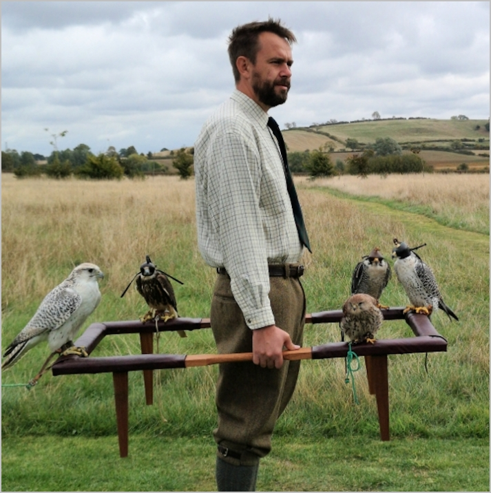 falconry cadge and cadger. wedding birds of prey experience