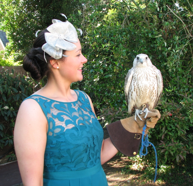 wedding guest with gyrfalcon